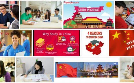 Study Sinology