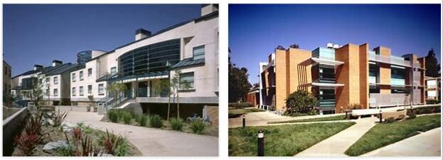 University of California Riverside Study Abroad